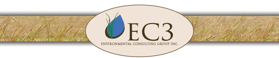 EC3 - Environmental Consulting Group Inc.